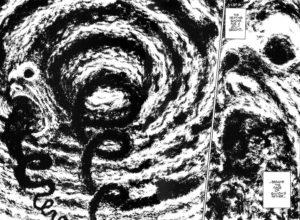 onirisme manga mangalerie spirale